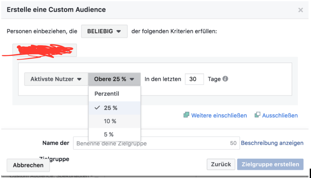 Custom Audience Facebook App